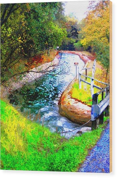 Canal Wood Print by Danielle Stephenson
