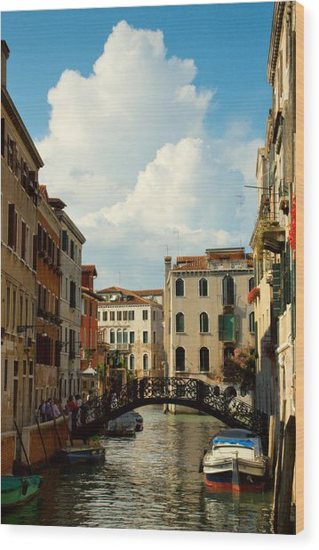 Canal With Iron Bridge In Venice Wood Print by Michael Henderson