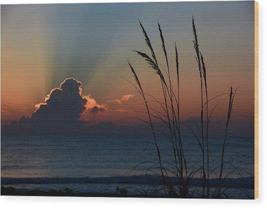 Canaveral Sunrise Wood Print