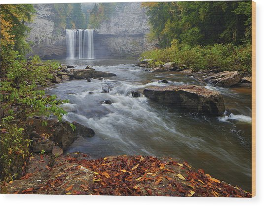 Cane Creek Falls Wood Print