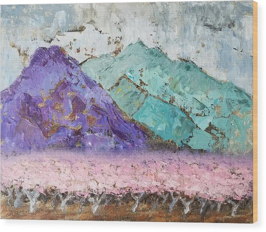 Canigou With Blooming Peach Trees Wood Print