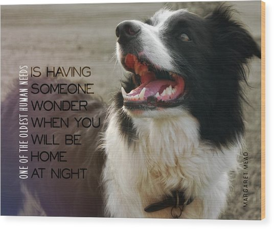 Canine Grin Quote Wood Print by JAMART Photography