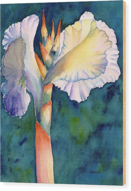 Canna Flower Watercolor Wood Print