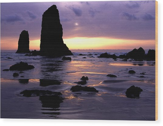 Cannon Beach Wood Print by Eric Foltz