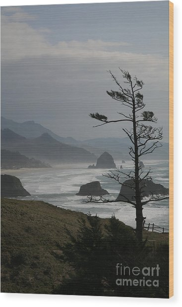 Cannon Beach Wood Print