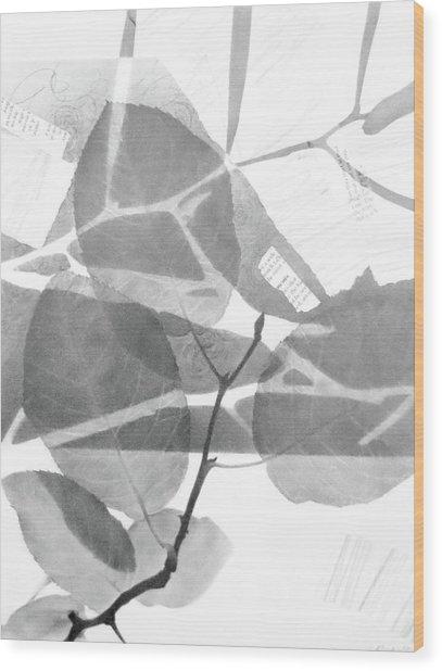 Canopy No.1 Wood Print