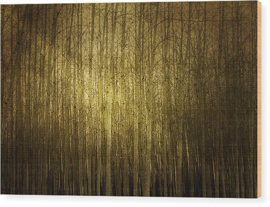 Can't See The Forest For The Trees Wood Print