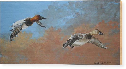 Canvasbacks Wood Print