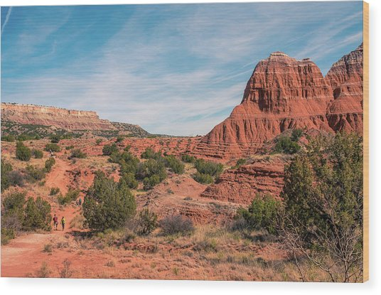 Canyon Hike Wood Print