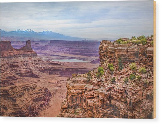 Canyon Landscape Wood Print