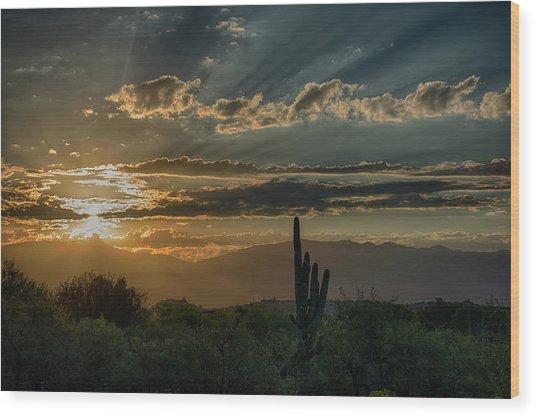 Wood Print featuring the photograph Canyon Ranch Dawn by Dan McManus