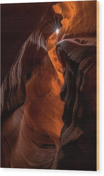 Wood Print featuring the photograph Canyon Star by Chuck Jason
