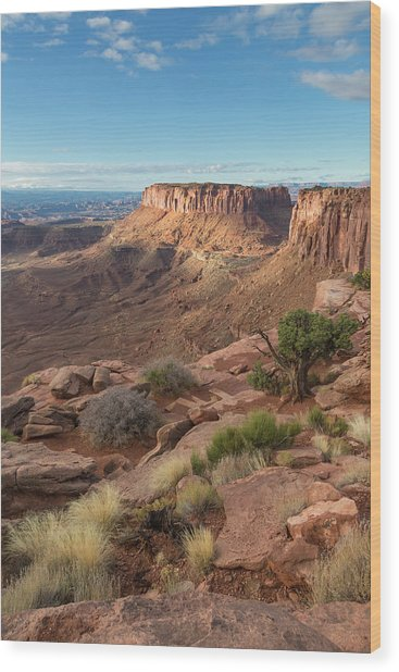 Canyonlands View Wood Print