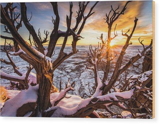 Canyonlands Winter Sunset Wood Print