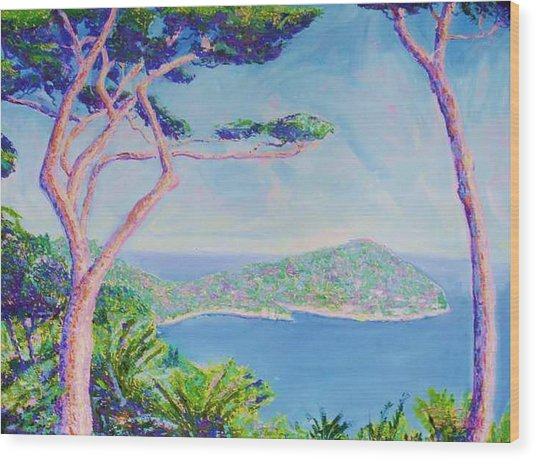 Cap Ferat Provence Wood Print by Pixie Glore