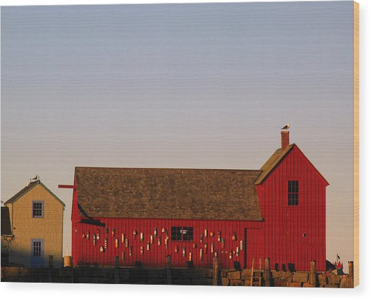 Cape Ann Motif Number 1 Wood Print by Juergen Roth