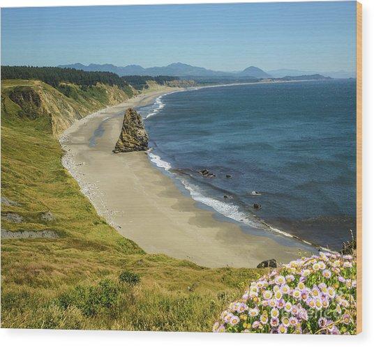 Cape Blanco On The Oregon Coast By Michael Tidwell Wood Print