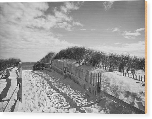 Cape Cod Beach Entry Wood Print
