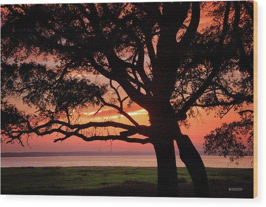 Cape Fear Sunset Overlook Wood Print