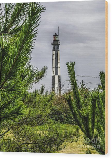 Cape Henry Light From The Dune Wood Print