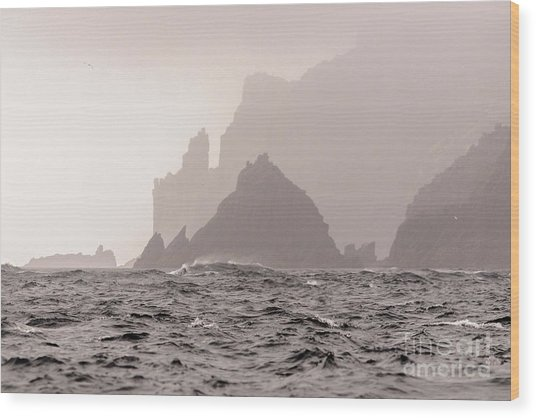 Cape Raoul Wood Print