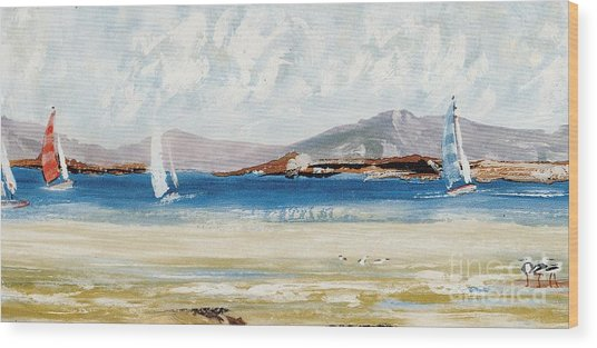 Cape Sailing Wood Print