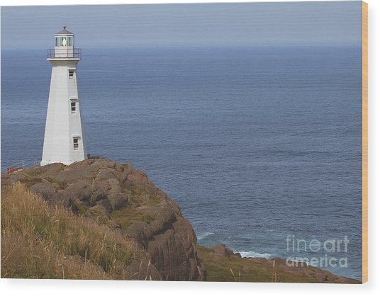 Cape Spear Wood Print