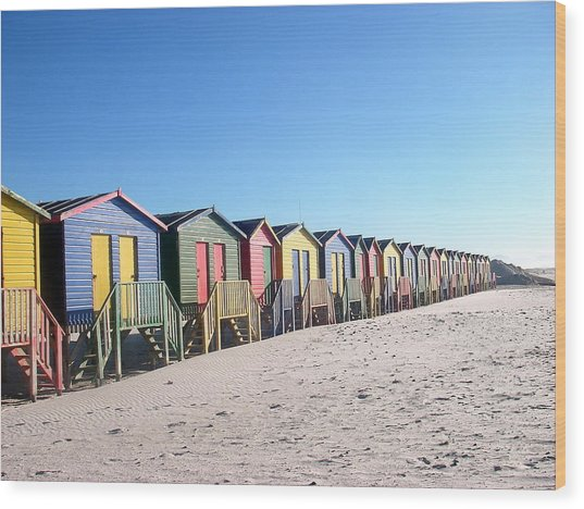 Cape Town Beachhuts Wood Print by Linda Russell