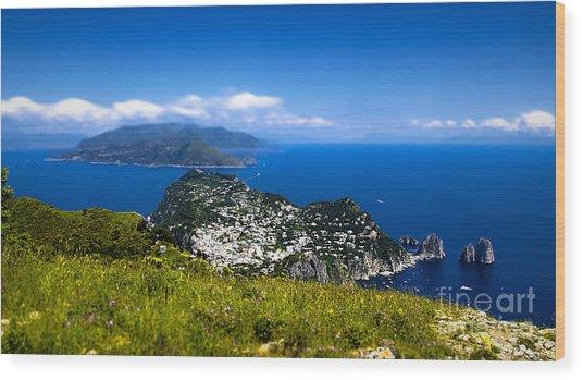 Capri Wood Print by Alessandro Giorgi Art Photography