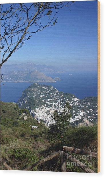 Capri At The Top Wood Print by Dennis Curry