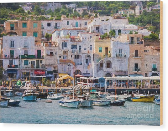 Capri Boat Harbor Wood Print