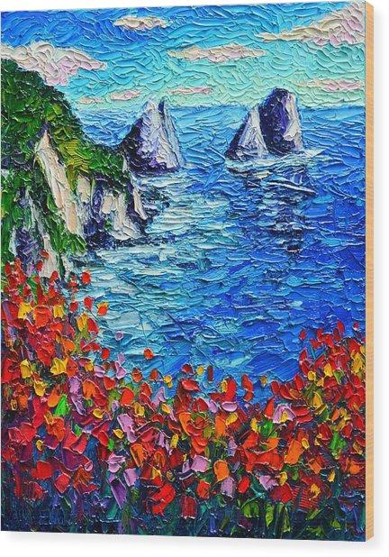 Capri Faraglioni 2 Italy Colors Modern Impressionist Palette Knife Oil Painting Ana Maria Edulescu  Wood Print