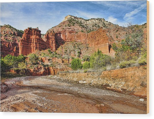 Caprock Canyon Wood Print