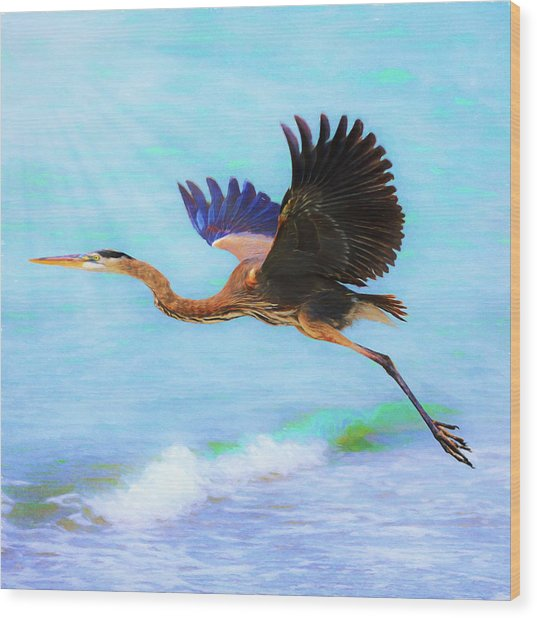 Captiva Crane In Flight Wood Print