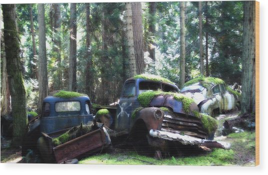 Car Lot In The Forest Wood Print by Diane Smith