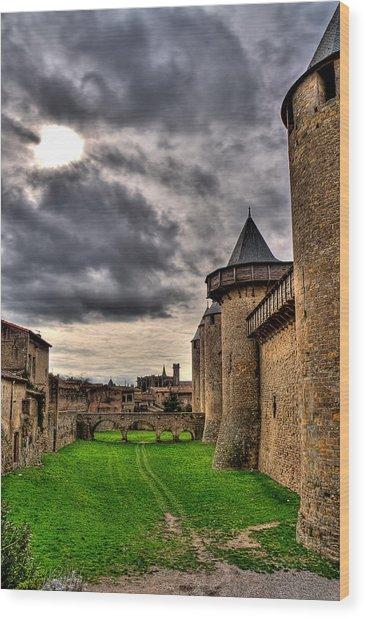 Carcassonne Castle Wood Print by Gareth Davies