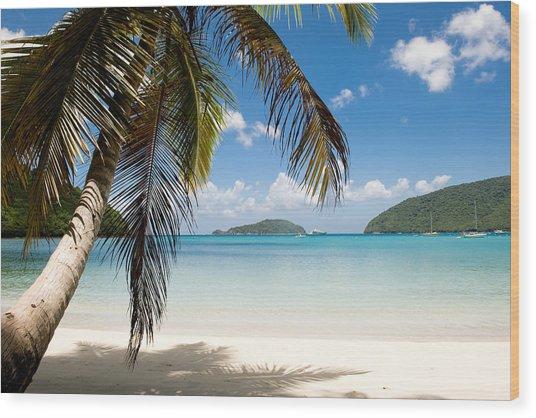 Caribbean Afternoon Wood Print