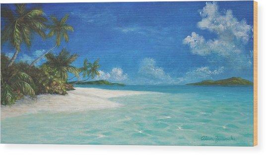 Caribbean Seclusion Wood Print