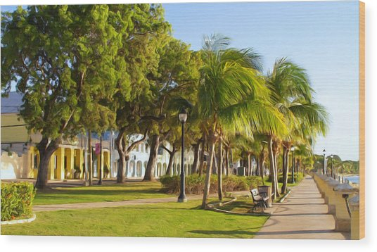 Caribbean Waterfront Wood Print by Linda Morland