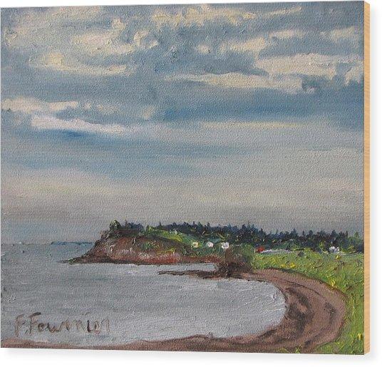 Caribou Beach Pictou Ns Canada Wood Print by Francois Fournier