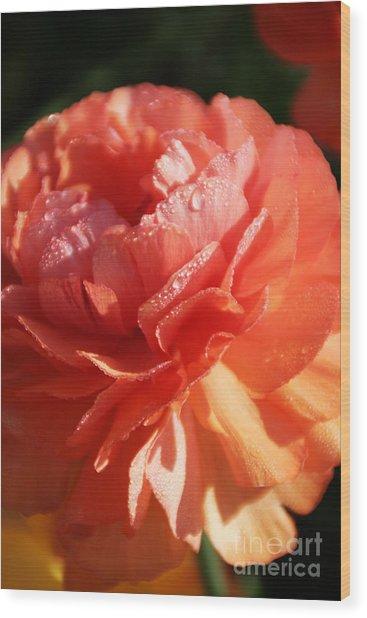 Carnival Of Flowers Wood Print