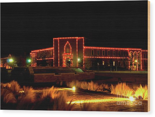 Wood Print featuring the photograph Carol Of Lights At Science Building by Mae Wertz