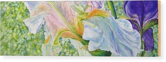 Carols-iris-i Wood Print by Nancy Newman