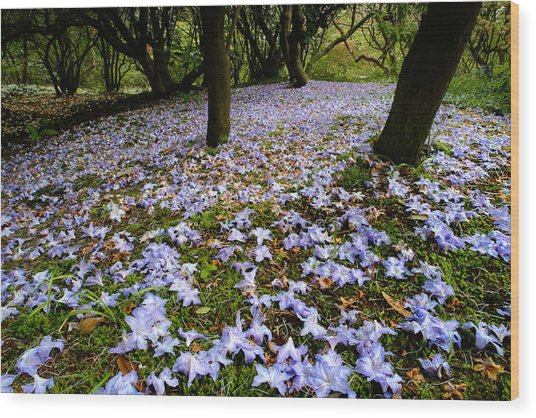 Carpet Of Petals Wood Print