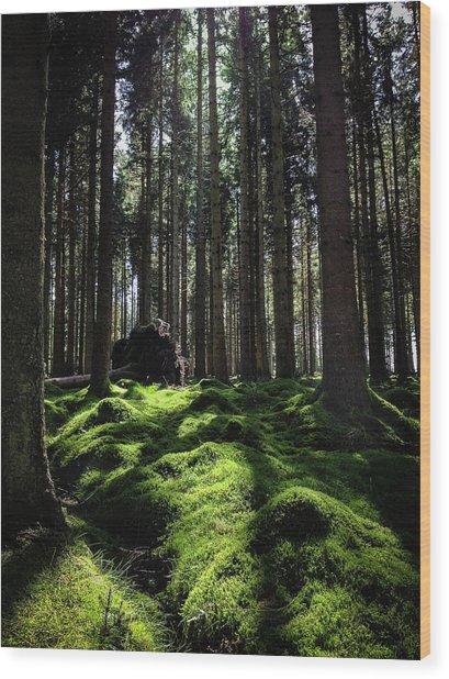 Carpet Of Verdacy Wood Print