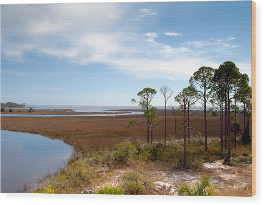 Carrabelle Salt Marshes Wood Print by Rich Leighton