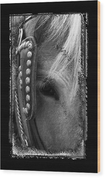 Carriage Horse B And W Wood Print