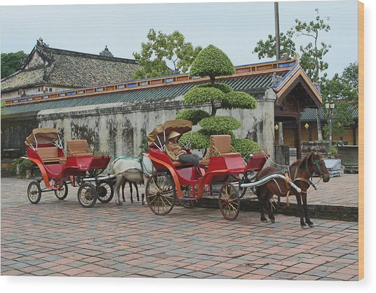 Carriage Rides Wood Print