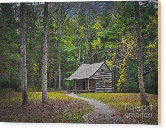Wood Print featuring the photograph Carter Shields Cabin In Cades Cove Tn Great Smoky Mountains Landscape by T Lowry Wilson