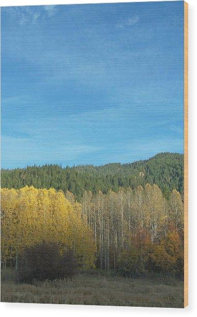 Cascade Fall Wood Print